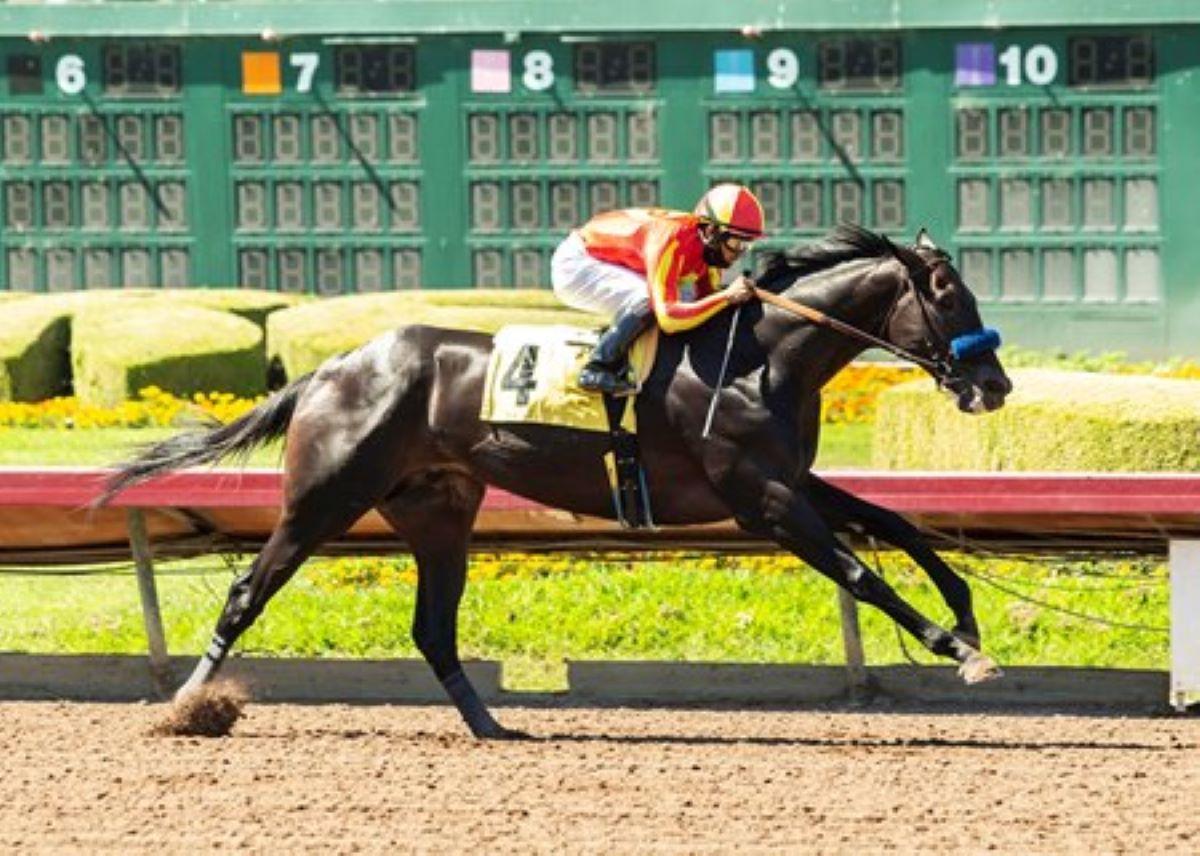 Derby Los Al-Ditunda