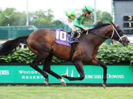 Arklow won his last start, the Grade 3 Louisville, in stakes-record time. He tries for his second Grade 1 win and 10th career victory in Saturday's United Nations Stakes at Monmouth Park. (Image: Coady Photography/Churchill Downs)