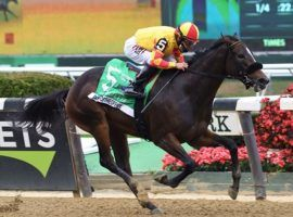 Dayoutattheoffice won the 2020 Frizette Stakes during Belmont Park's Fall Meet. The Grade 1 Frizette is one of 20 graded stakes on Belmont Park's 2021 Fall Meet schedule. (Image: Coglianese Photos)