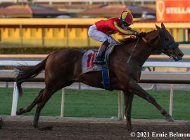 Defunded owns only this maiden special weight win in five starts. But the gelding is the 3/5 favorite to win Sunday's Grade 3 Los Alamitos Derby. (Image: Ernie Belmonte)