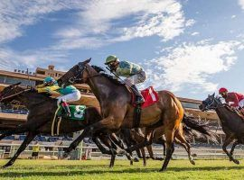 """Del Mar changed its traditional $2 Pick 6 to a 20-cent jackpot-style it calls the """"Rainbow Pick Six."""" The new wager is an effort to create seven-figure pools for mandatory payout days. (Image: Del Mar Thoroughbred Club)"""