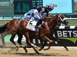 Drain the Clock nipped rival Jackie's Warrior to win the Grade 1 Woody Stephens last month. The two meet again in Sunday's Grade 2 Amsterdam Stakes at Saratoga. (Image: Chris Rahaye/NYRA)