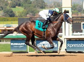 Dream Shake ran his career-best 96 Beyer Speed Figure in this maiden debut victory in January. He moves to turf for the first time in Del Mar's traditional summer stakes opener: the Oceanside Stakes. (Image: Benoit Photo)