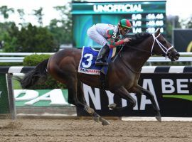 Firenze Fire opened his 6-year-old campaign winning the Grade 3 Runhappy at Belmont Park. He goes for his third consecutive Belmont Park stakes victory and third win of 2021 in Sunday's Grade 2 John A. Nerud Stakes. (Image: Susie Raisher)