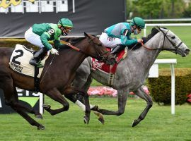 Harvey's Lil Goil (right) held off Lemista to win the Grade 3 Beaugay in May. The two tangle again in Saturday's Grade 1 Diana Stakes at Saratoga. (Image: Coolmore Farm)