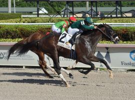 Jesus' Team won December's Claiming Crown Jewel Stakes for his only stakes victory. The one-time claimer returns to the track as a millionaire for Sunday's City of Dania Stakes at Gulfstream Park. (Image: Lauren King/Coglianese Photos)