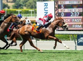 Jolie Olimpica's last victory came 14 months ago in the Grade 2 Monrovia Stakes at Santa Anita. She is one of the favorites in the opening leg of Saturday's Cross Country Pick 5: the Grade 2 Nassau Stakes at Woodbine Racetrack. (Image: Benoit Photo)