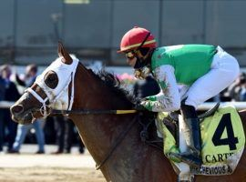 Mischevious Alex won his first Grade 1 with this 5 1/4-length blowout in the Carter Handicap in April. He is the 2/1 favorite to win his second at Saturday's Vanderbilt Stakes at Saratoga. (Image: Coglianese Photos/Chelsea Durand)