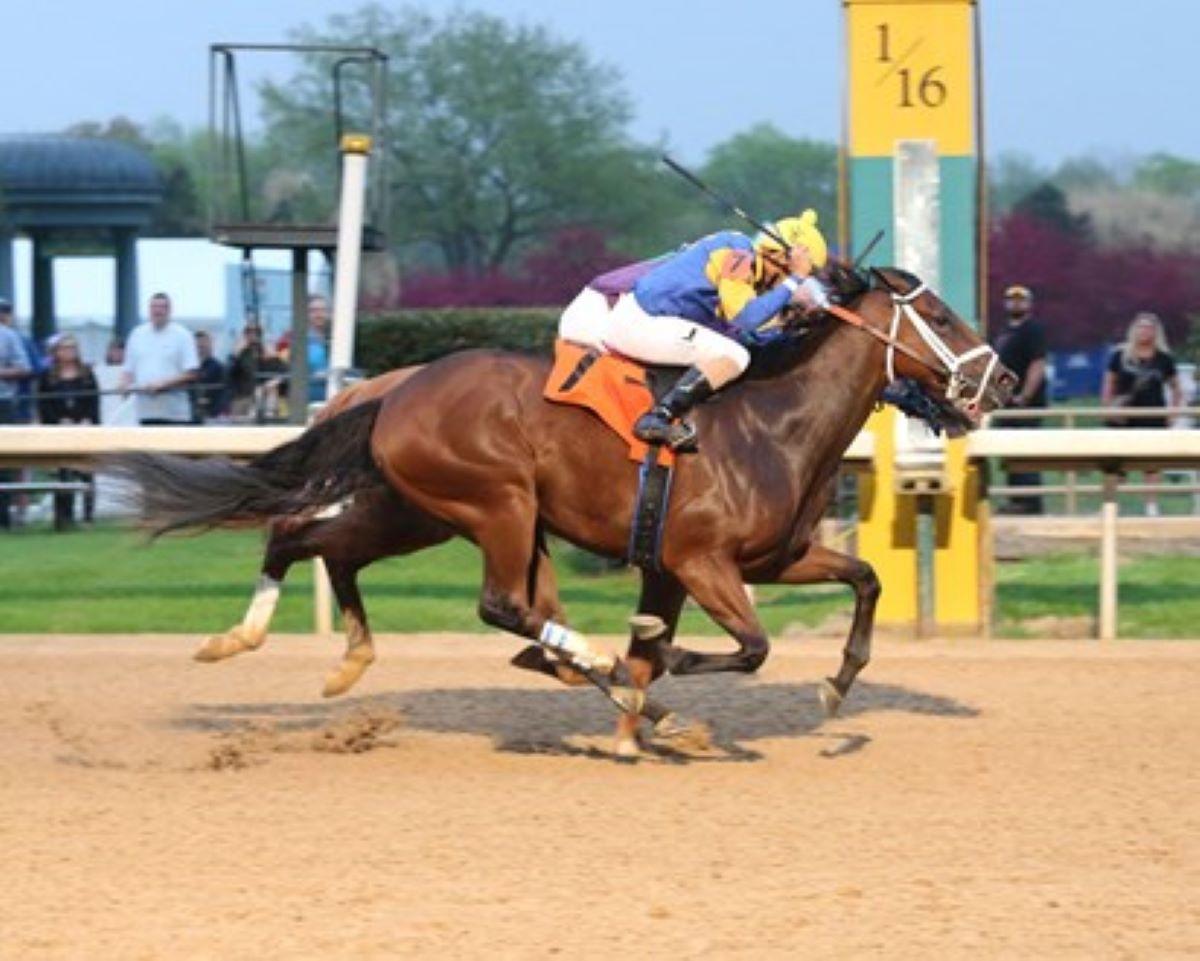 Mr. Wireless-Indiana Derby