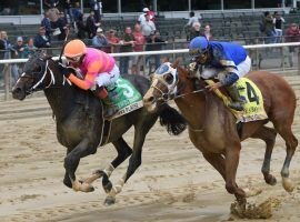 Mystic Guide (right) lost the Grade 2 Suburban Stakes to Max Player earlier this month. Afterwards, X-rays revealed a bone chip in Mystic Guide's knee that requires surgery. (Image: Elsa Lorieul/Coglianese Photos/NYRA)