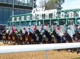 Oaklawn Park's 2021-22 stakes schedule consists of a record 36 stakes. Included is a revamping of its Kentucky Derby trail stops. (Image: Coady Photography)