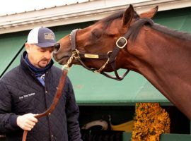 After recent workouts didn't meet his approval, trainer Mike McCarthy decided Preakness Stakes winner Rombauer needed a freshening. So he's giving his prize colt the next 60 days off. (Image: Maryland Jockey Club)