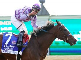 The pinnacle to date of Simply Ravishing's career came when she and Luis Saez captured the Grade 1 Alcibiades Stakes at Churchill Downs last October. The 3-year-old filly came out of a three-month retirement after not going into-foal. (Image: Coady Photography)