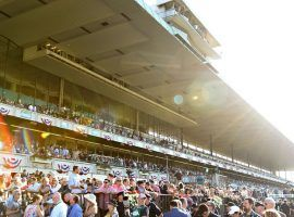 Fans returned to Belmont Park for this year's spring/summer meet, albeit in smaller numbers. The track still recorded a 20.6% boost in all-sources handle from 2019. (Image: NYRA)