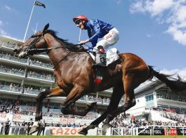 Adayar's Epsom Derby prance and his victory in the King George VI and Queen Elizabeth Stakes skipped him to a share of the top spot in the latest Longines World's Best Racehorse Rankings. (Image: Reuters)