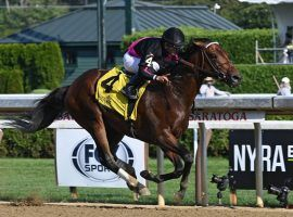 One-time A-list 3-year-old Art Collector won the Alydar Stakes at Saratoga for his first win in nearly a year. He travels to West Virginia ,where he's the 5/2 favorite for Friday's Grade 2 Charles Town Classic. (Image: NYRA)