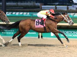 Bodexpress captured last year's Grade 1 Clark Stakes at Churchill Downs. That older-horse race is the only Grade 1 on the track's September or Fall Meet schedule. (Image: Coady Photography)