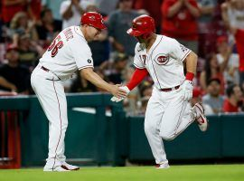 The Cincinnati Reds have taken a one-game lead over the San Diego Padres in the race for the second NL wild card berth. (Image: Sam Greene/Cincinnati Enquirer)