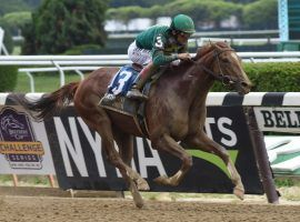 Code of Honor captured the Dwyer Stakes as a sophomore. As a more mature 5-year-old, he seeks his first win in 14 1/2 months in Saturday's Iselin Stakes at Monmouth Park. (Image: NYRA Photo)