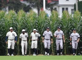 Members of the Chicago White Sox and New York Yankees step onto the field after walking through rows of corn in the outfield for the Field of Dreams game in Dyersville, Iowa. (Image: Getty)