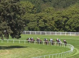 The unique-to-America Kentucky Downs turf course offers the biggest pari-mutuel payouts of any US track. It begins its short, six-day season Sunday. (Image: Coady Photography)
