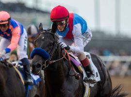 Kentucky Derby winner Medina Spirit won his third race of 2021 with this 1 1/4-length victory in the Shared Belief Stakes over Rock Your World. The two sophomores may see each other for the fourth time this year in either the Pennsylvania Derby or Awesome Again Stakes. (Image: Benoit Photo)