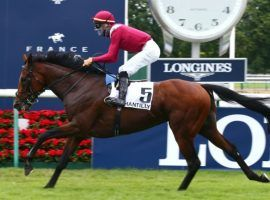 French Derby winner and Saudi Cup winner Mishriff is the favorite to win Wednesday's Group 1 Juddmonte International at York Racecourse. The Juddmonte is one of three Group 1 events in the 28-race, four-day racing festival. (Image: France Galop/scoopdyga.com)