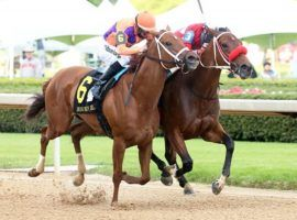 Monomoy Girl (6) lost this duel to Letruska (inside) in April's Grade 1 Apple Blossom. The Champion Older Female hasn't run since and isn't expected back until December. (Image: Coady Photography)