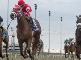 Munnyfor Ro put her Woodbine Oaks rivals in the rear-view mirror. She comes back on three weeks rest trying to do the same in the Queen's Plate at Woodbine. (Image: Michael Burns Photo)