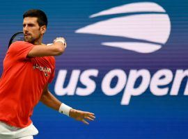 Novak Djokovic enters the US Open as the favorite to win the tournament and complete a historic calendar-year Grand Slam. (Image: USOpen.org)