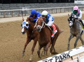 Happy Saver (right) shakes pursuer Mystic Guide in deep stretch of last year's Grade 1 Jockey Club Gold Cup. Happy Saver seeks to be the 11th repeat champion of one of the New York Racing Association's most historic events. (Image: Chelsea Durand/NYRA)