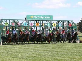 New York bettors now have access to Kentucky Downs' six-day meet. The entity signed an 11th-hour agreement with the New York Racing Association opening up wagering to New York bettors. (Image: Coady Photography)