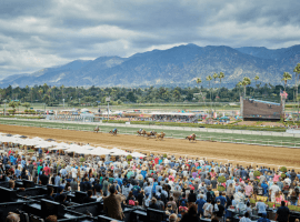 The Santa Anita Derby is one of the biggest meets of the year during Santa Anita Park's Winter/Spring Meet. It is one of 10 Grade 1s on the track's 94-stakes schedule. (Image: Kelly Serfoss)