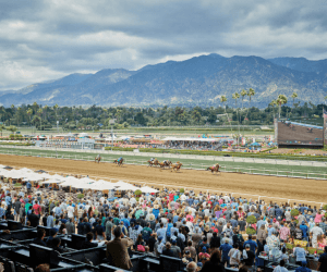 Santa Anita Winter-Spring 2021-22