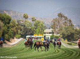 The unique Santa Anita Park hillside turf course returns for at least four stakes races during the track's Autumn Meet in October. (Image: Zoe Metz Photography)