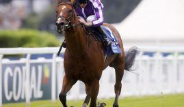 Trainer Aidan O'Brien's star colt St Mark's Basilica is 6-for-9 in his career. He's out indefinitely with an infected hind leg. (Image: Healy Racing)