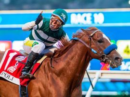 Jockey Tiago Pereira rode Tripoli to Horse of the Meet honors at Del Mar. Tripoli won the Grade 1 Pacific Classic and helped owners Hronis Racing take its sixth Del Mar owners title and fourth in the last five years. (Image: Benoit Photo)