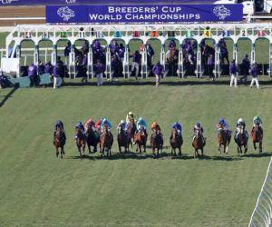 Breeders' Cup Betting Menu-Race Order