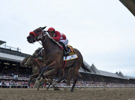 Letruska captured August's Grade 1 Personal Ensign by a half-length overe Bonny South. The two, along with fourth-place Dunbar Road, tangle again in Sunday's Grade 1 Spinster at Keeneland. (Image: NYRA/Coglianese Photos)