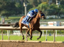 Bob Baffert's star 3-year-old filly Private Mission heads to the Breeders' Cup Distaff after Sunday's convincing victory in the Grade 2 Zenyatta Stakes at Santa Anita Park. (Image: Benoit Photo)